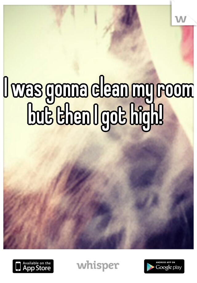I was gonna clean my room but then I got high!