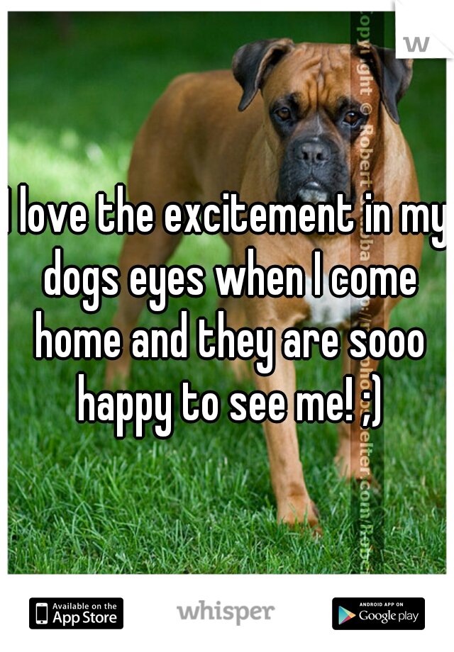 I love the excitement in my dogs eyes when I come home and they are sooo happy to see me! ;)