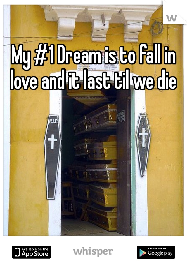 My #1 Dream is to fall in love and it last til we die