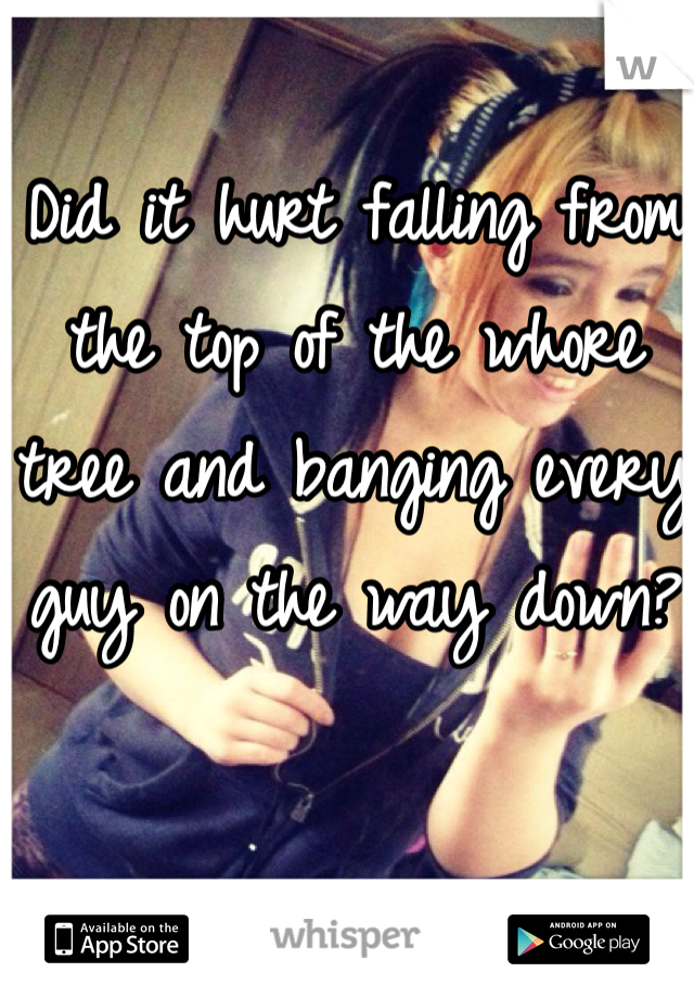 Did it hurt falling from the top of the whore tree and banging every guy on the way down?