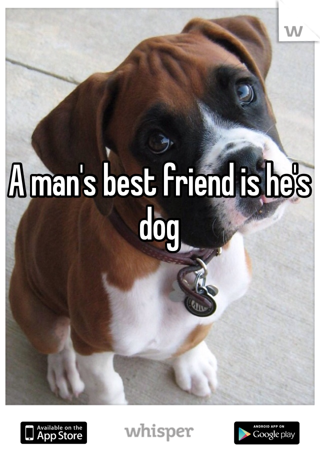 A man's best friend is he's dog