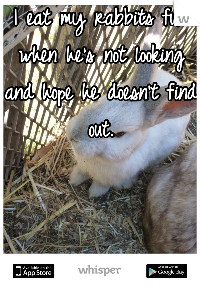 I eat my rabbits fur when he's not looking and hope he doesn't find out.