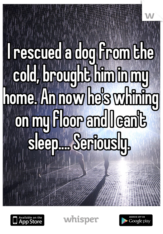 I rescued a dog from the cold, brought him in my home. An now he's whining on my floor and I can't sleep.... Seriously.