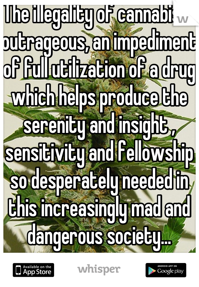 The illegality of cannabis is outrageous, an impediment of full utilization of a drug which helps produce the serenity and insight , sensitivity and fellowship so desperately needed in this increasingly mad and dangerous society...
