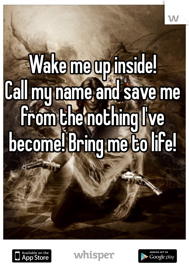 Wake me up inside! Call my name and save me from the nothing I've become! Bring me to life!