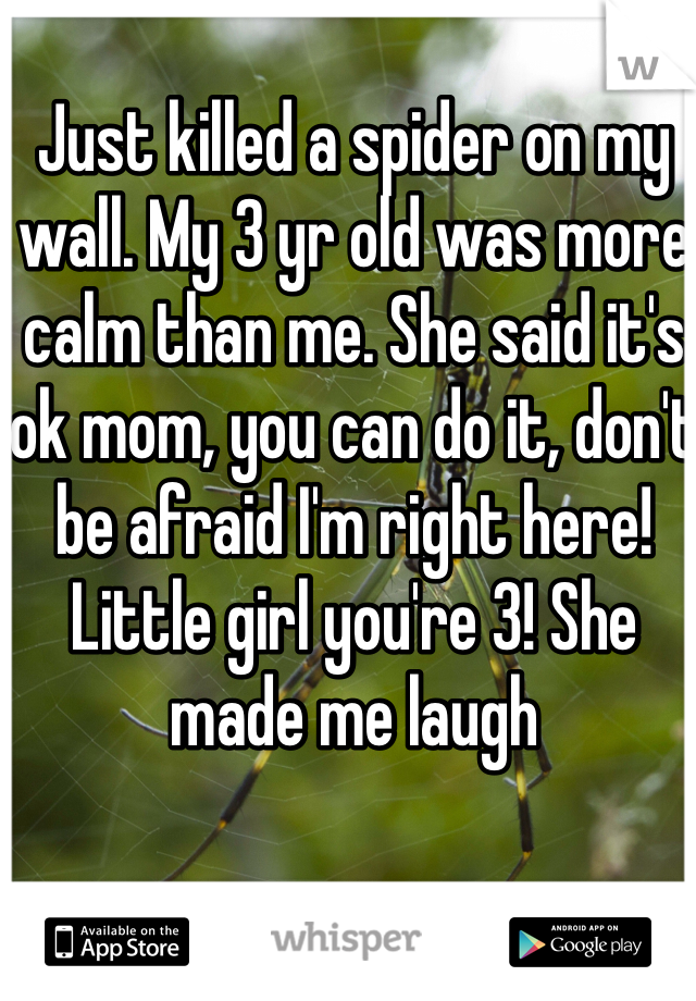 Just killed a spider on my wall. My 3 yr old was more calm than me. She said it's ok mom, you can do it, don't be afraid I'm right here!  Little girl you're 3! She made me laugh