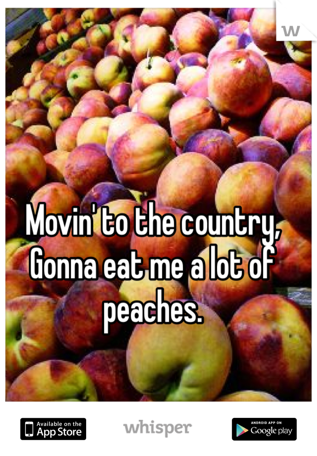 Movin' to the country, Gonna eat me a lot of peaches.