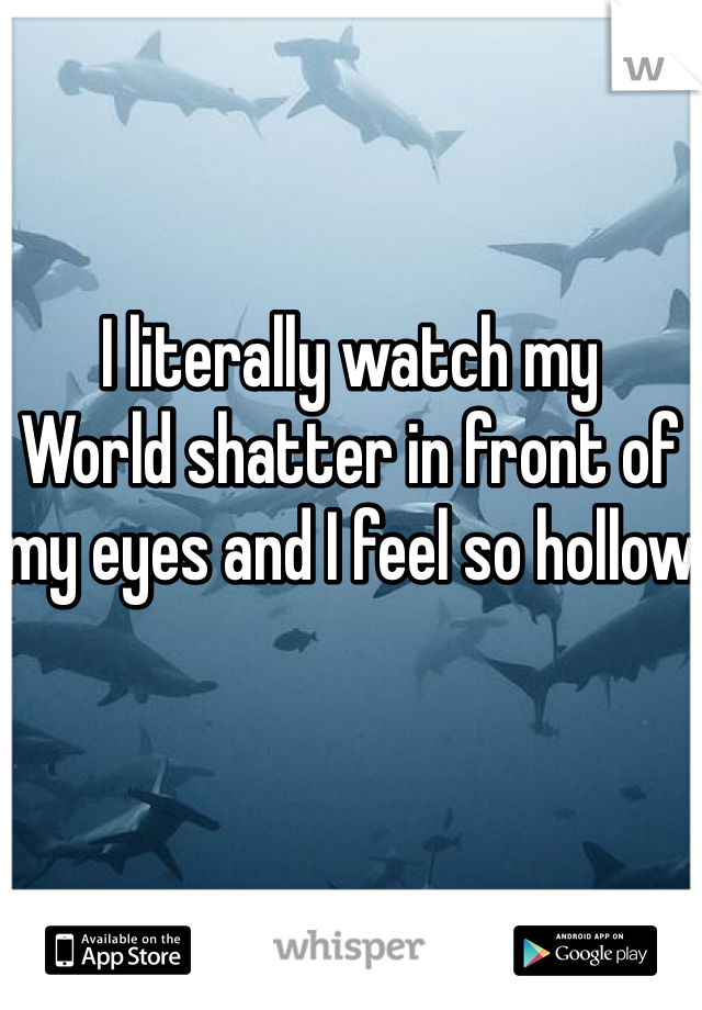 I literally watch my World shatter in front of my eyes and I feel so hollow