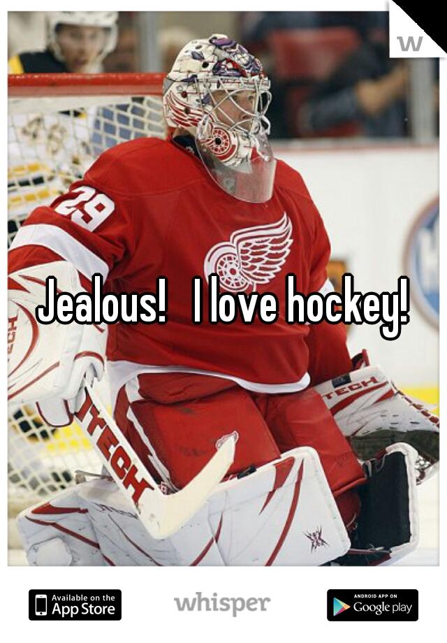 Jealous!   I love hockey!