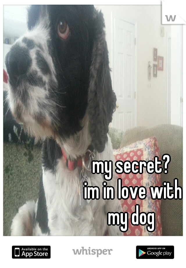 my secret?  im in love with my dog