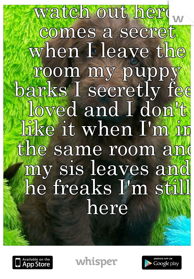 watch out here comes a secret when I leave the room my puppy barks I secretly feel loved and I don't like it when I'm in the same room and my sis leaves and he freaks I'm still here