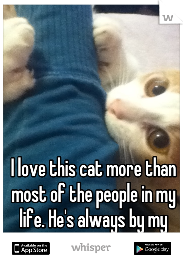 I love this cat more than most of the people in my life. He's always by my side.