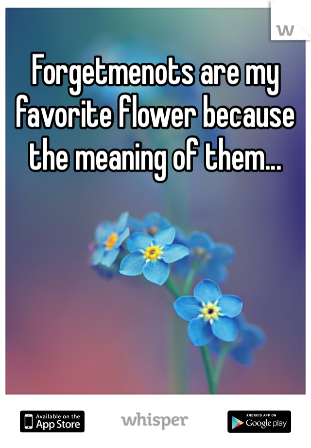 Forgetmenots are my favorite flower because the meaning of them...