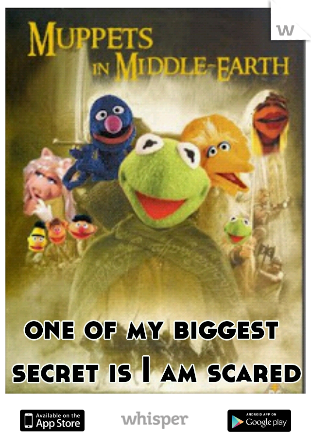 one of my biggest secret is I am scared of muppets