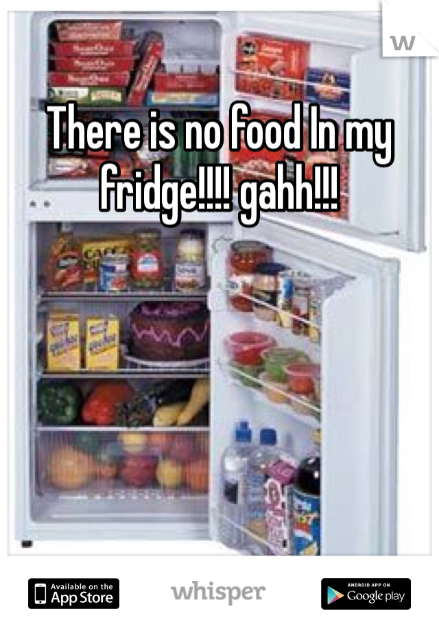 There is no food In my fridge!!!! gahh!!!