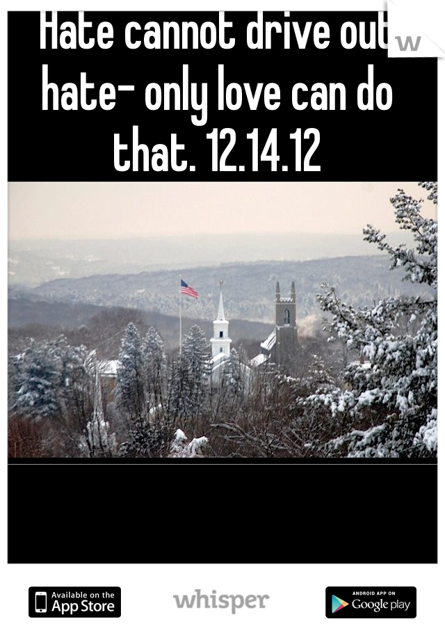 Hate cannot drive out hate- only love can do that. 12.14.12