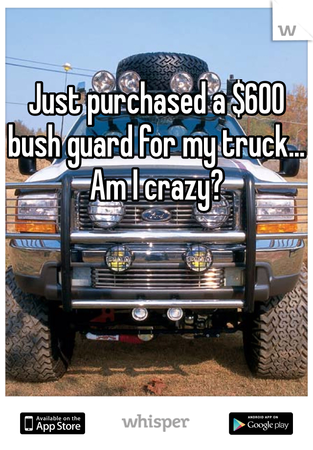 Just purchased a $600 bush guard for my truck... Am I crazy?
