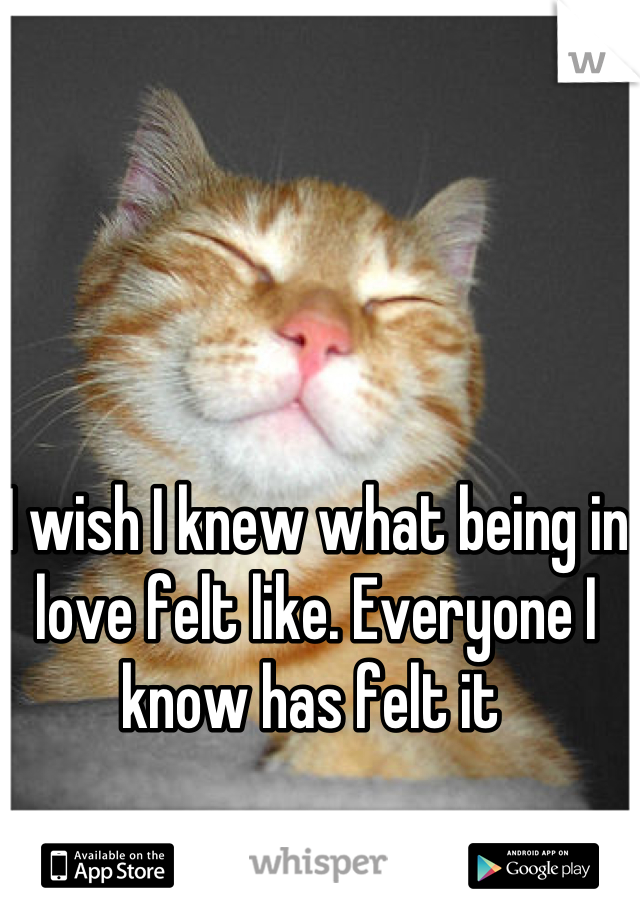 I wish I knew what being in love felt like. Everyone I know has felt it