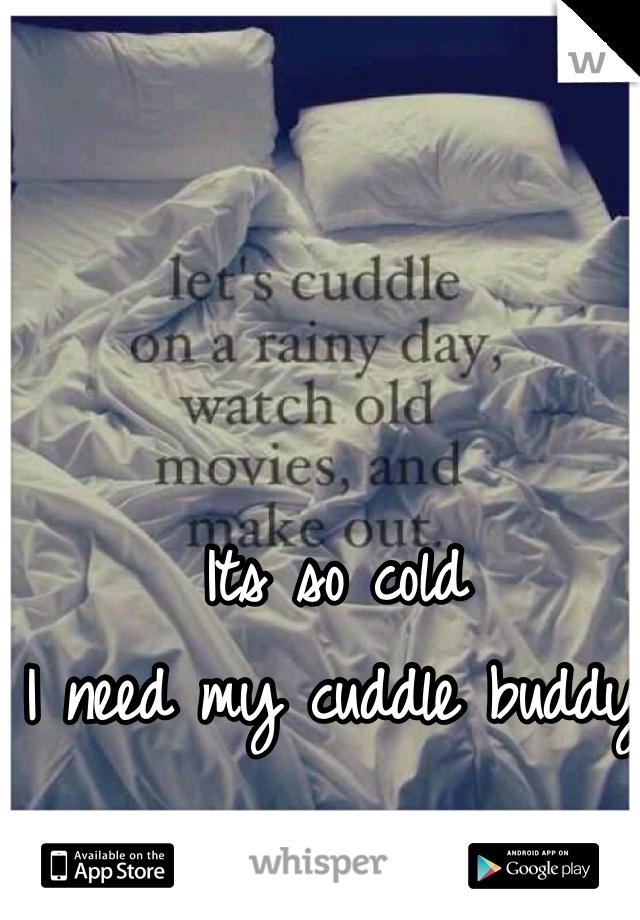 Its so cold I need my cuddle buddy