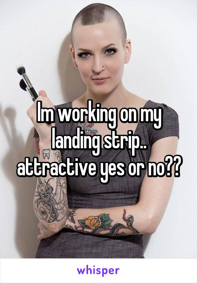 Im working on my landing strip.. attractive yes or no??