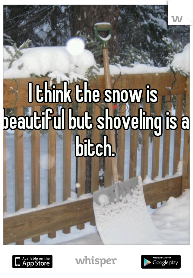 I think the snow is beautiful but shoveling is a bitch.