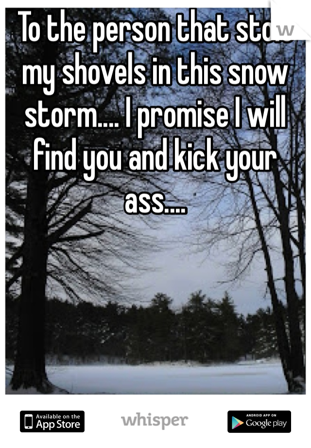 To the person that stole my shovels in this snow storm.... I promise I will find you and kick your ass....
