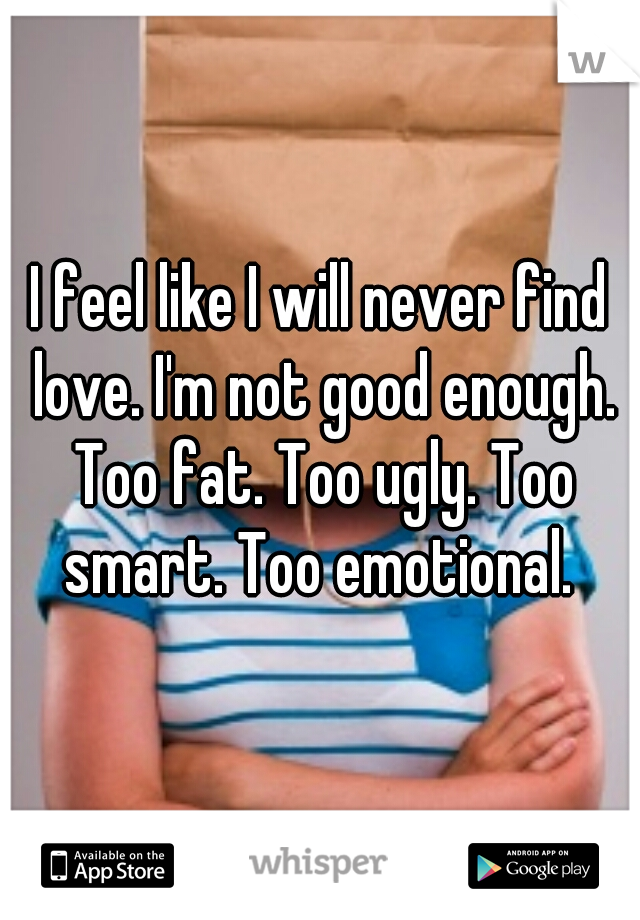 I feel like I will never find love. I'm not good enough. Too fat. Too ugly. Too smart. Too emotional.