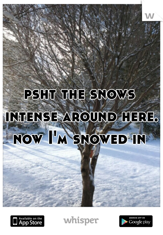 psht the snows intense around here. now I'm snowed in