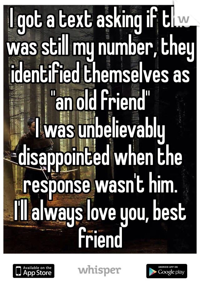 """I got a text asking if this was still my number, they identified themselves as """"an old friend"""" I was unbelievably disappointed when the response wasn't him. I'll always love you, best friend"""