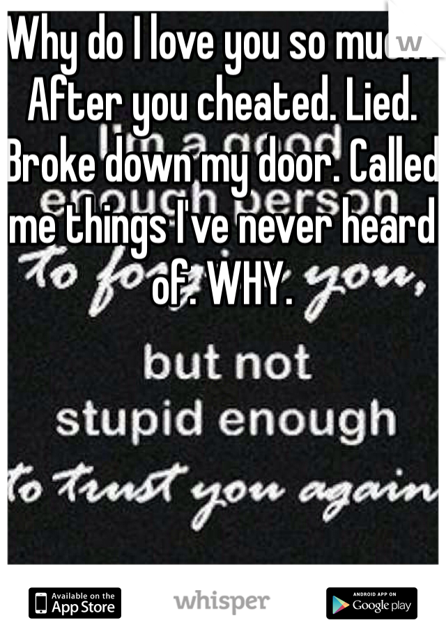 Why do I love you so much? After you cheated. Lied. Broke down my door. Called me things I've never heard of. WHY.