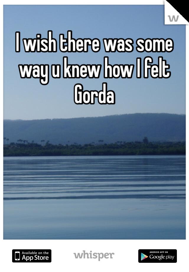 I wish there was some way u knew how I felt Gorda