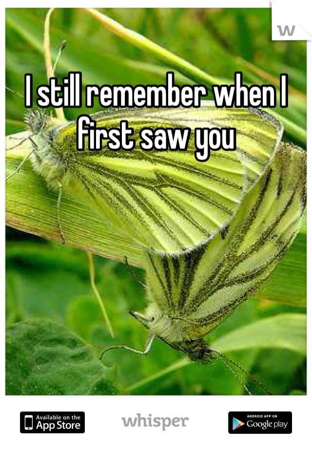 I still remember when I first saw you
