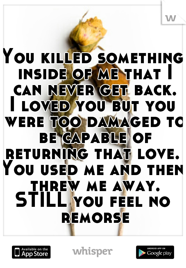 You killed something inside of me that I can never get back. I loved you but you were too damaged to be capable of returning that love.  You used me and then threw me away. STILL you feel no remorse