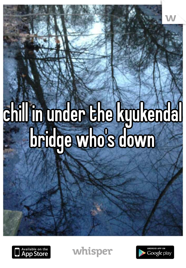 chill in under the kyukendal bridge who's down
