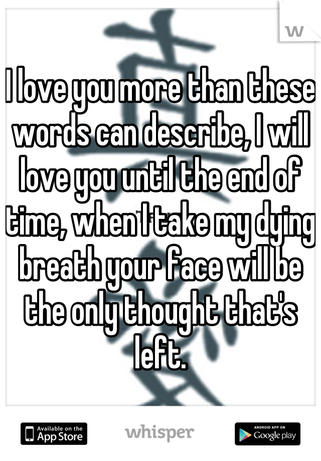 I love you more than these words can describe, I will love you until the end of time, when I take my dying breath your face will be the only thought that's left.