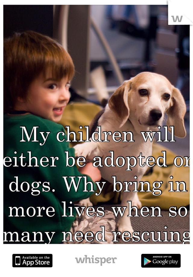 My children will either be adopted or dogs. Why bring in more lives when so many need rescuing