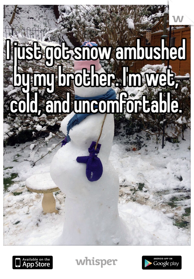 I just got snow ambushed by my brother. I'm wet, cold, and uncomfortable.