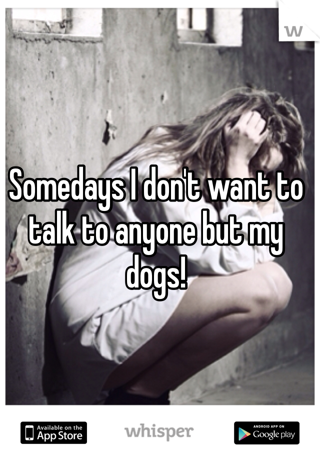 Somedays I don't want to talk to anyone but my dogs!