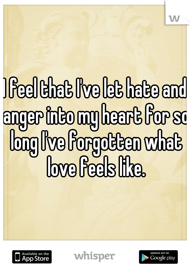 I feel that I've let hate and anger into my heart for so long I've forgotten what love feels like.