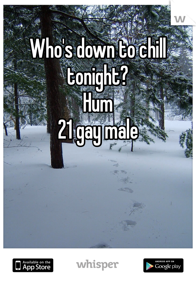 Who's down to chill tonight?  Hum 21 gay male