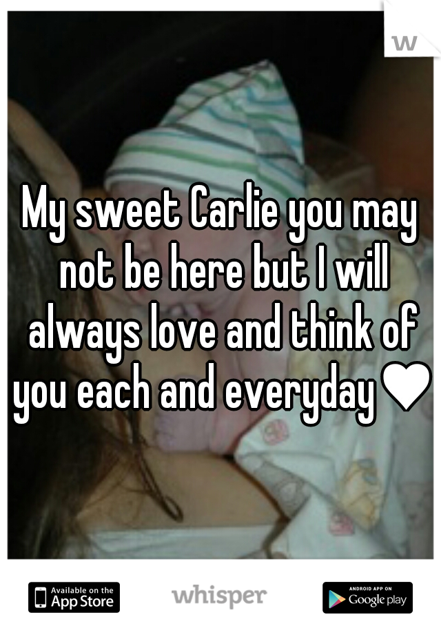My sweet Carlie you may not be here but I will always love and think of you each and everyday♥
