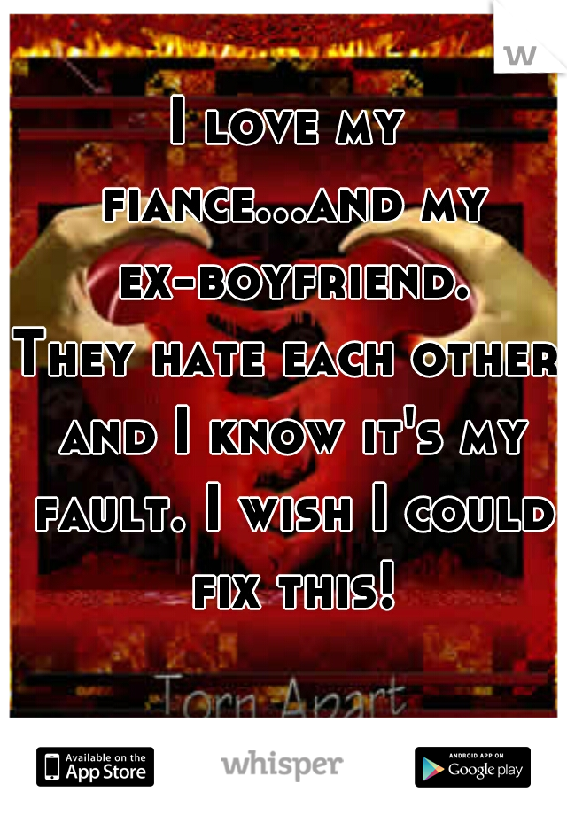 I love my fiance...and my ex-boyfriend. They hate each other and I know it's my fault. I wish I could fix this!