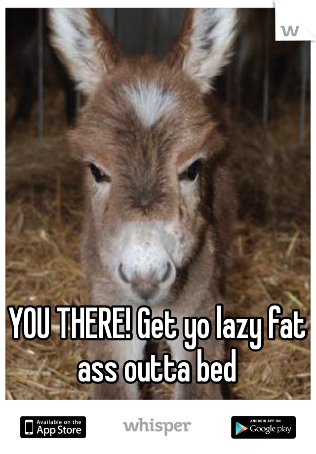 YOU THERE! Get yo lazy fat ass outta bed