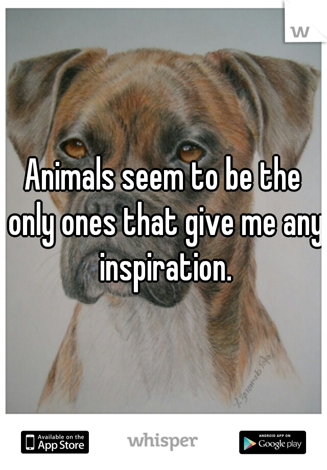 Animals seem to be the only ones that give me any inspiration.