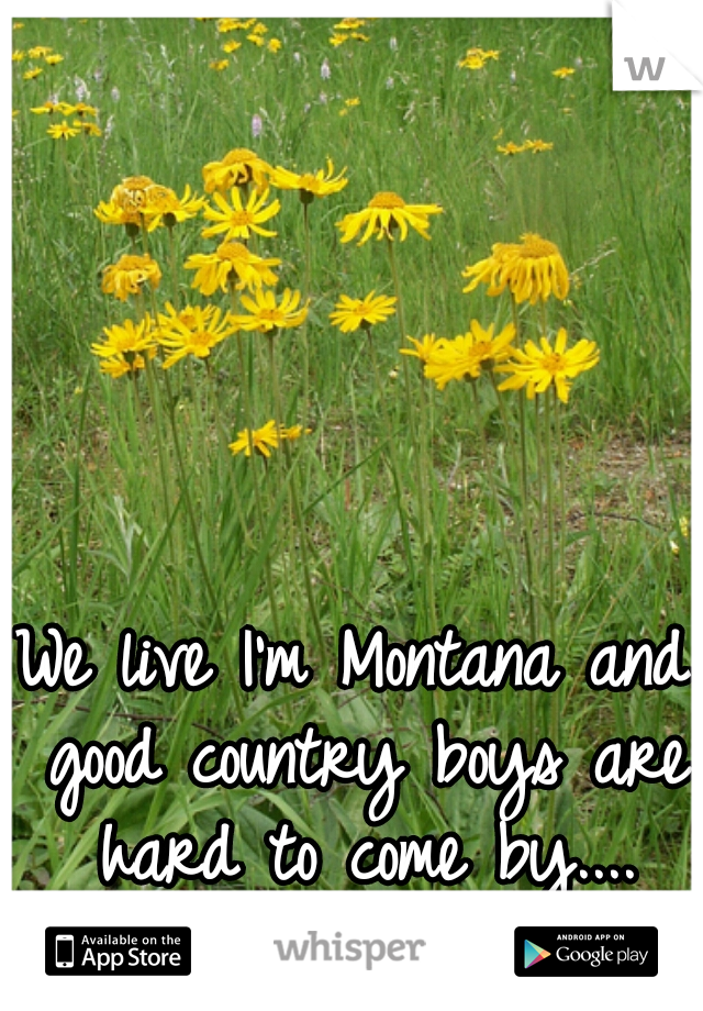We live I'm Montana and good country boys are hard to come by.... Makes me sad!