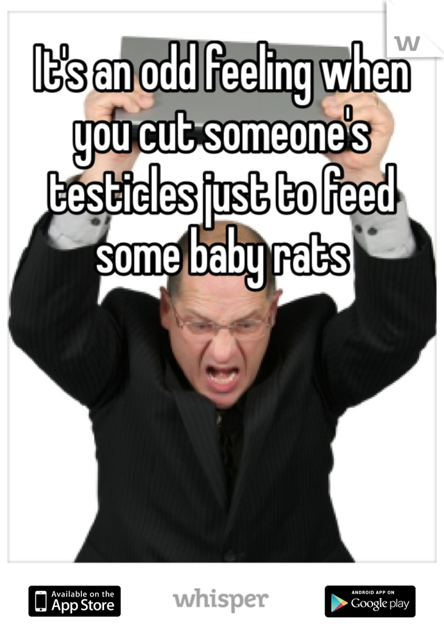 It's an odd feeling when you cut someone's testicles just to feed some baby rats