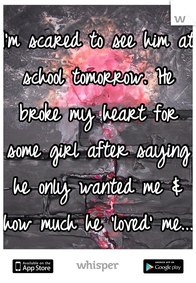 I'm scared to see him at school tomorrow. He broke my heart for some girl after saying he only wanted me & how much he 'loved' me...