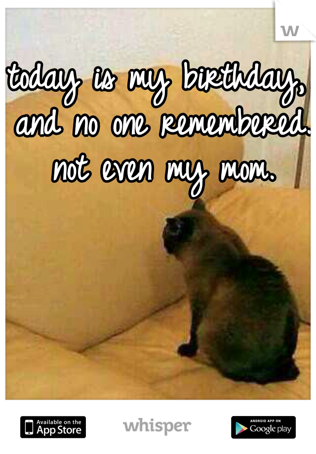 today is my birthday, and no one remembered. not even my mom.