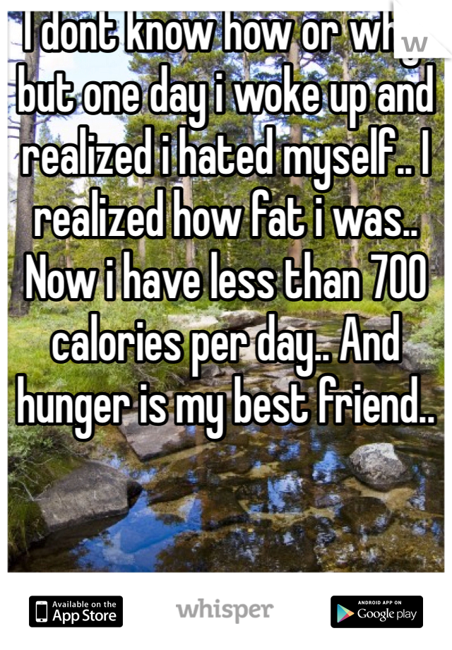 I dont know how or why, but one day i woke up and realized i hated myself.. I realized how fat i was.. Now i have less than 700 calories per day.. And hunger is my best friend..