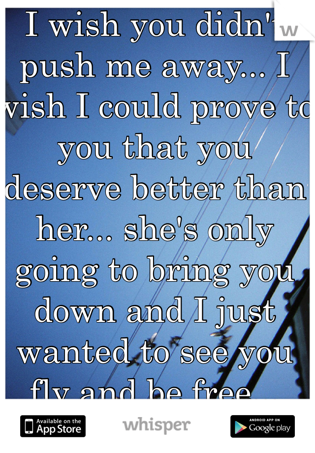 I wish you didn't push me away... I wish I could prove to you that you deserve better than her... she's only going to bring you down and I just wanted to see you fly and be free...